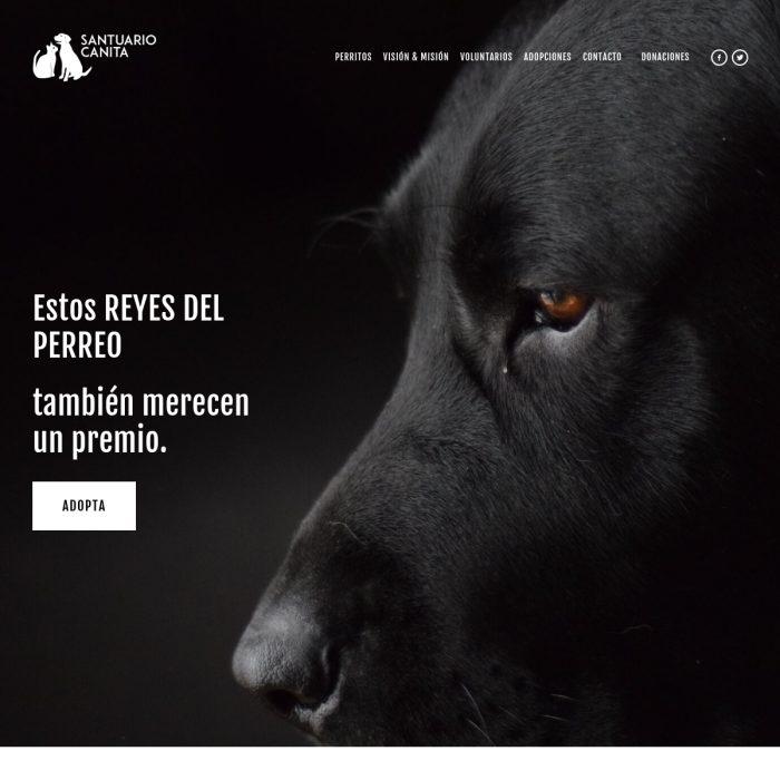 ElPerreoseresPeta.com