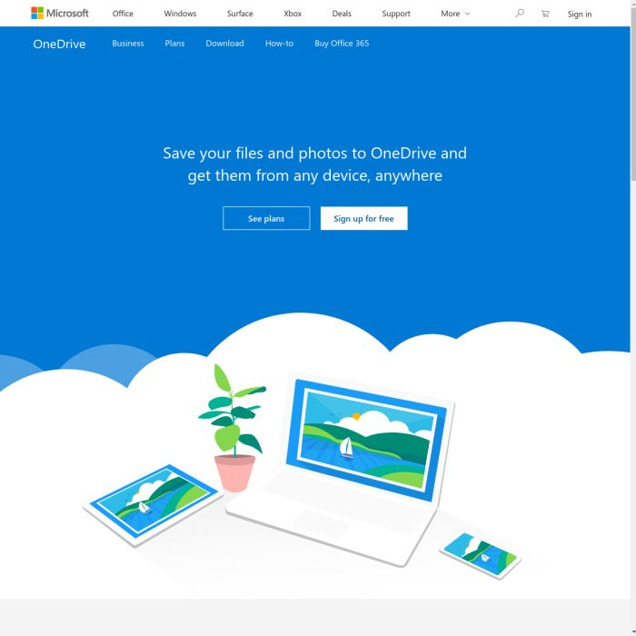 OneDrive.Live.com