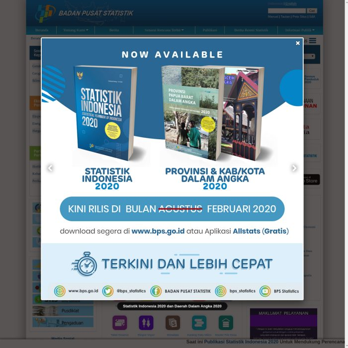 ️ BPS.go.id - Badan Pusat Statistik   ACEH, Kalimantan ...