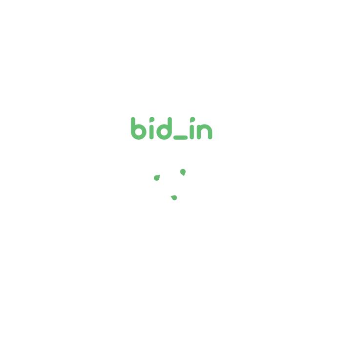 BidInAuction.com