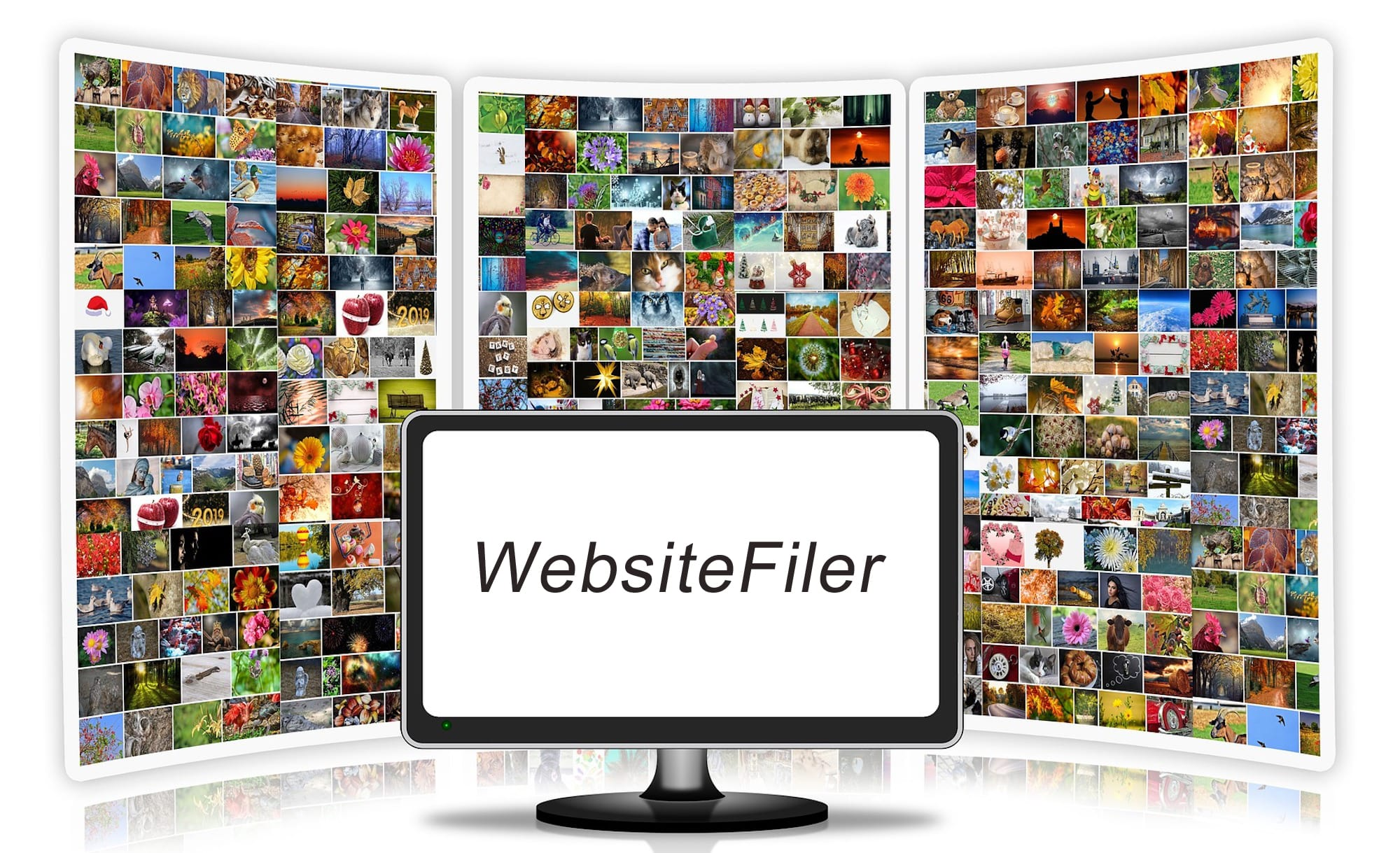 Website Filer Audit
